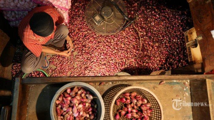 Produksi Turun, Harga Bawang Merah Makin Mahal