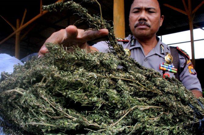 Kurir Bawa Empat Koper Ganja Ditangkap di Aceh