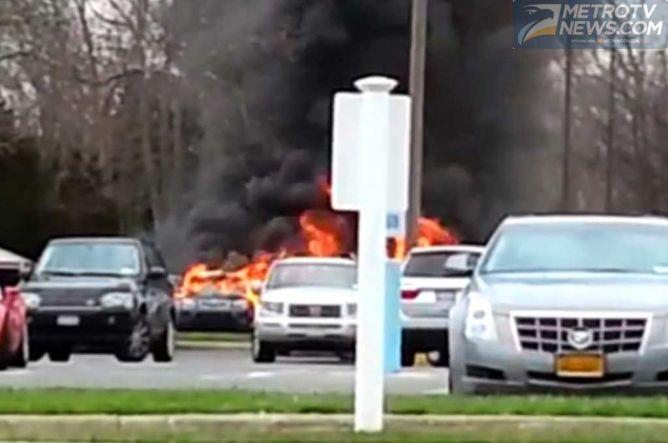 Niat Basmi Serangga, Seorang Pria Justru Membakar Tiga Mobil