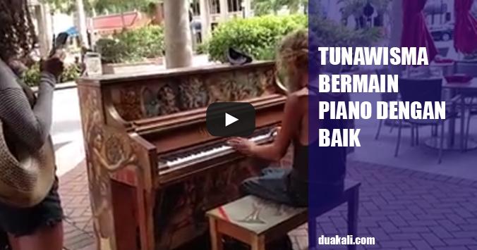 Seorang Tunawisma Bermain Piano dengan Baik Di Daerah Florida