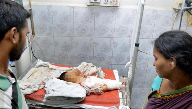 Bayi Meninggal Digigit Tikus Saat Dirawat Di Rumah Sakit