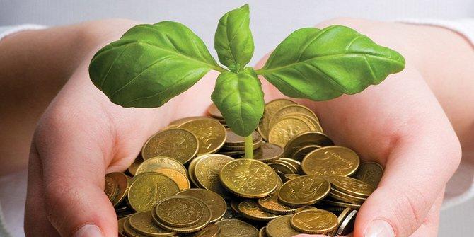 Tips Berinvestasi Untuk Kaum Muda