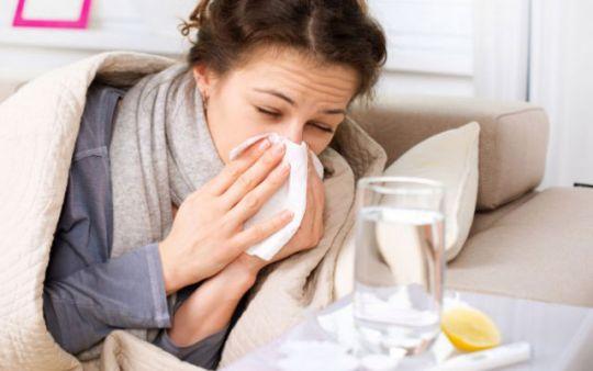 Photo of Beragam Makanan yang Ampuh Tuk Mengatasi Flu