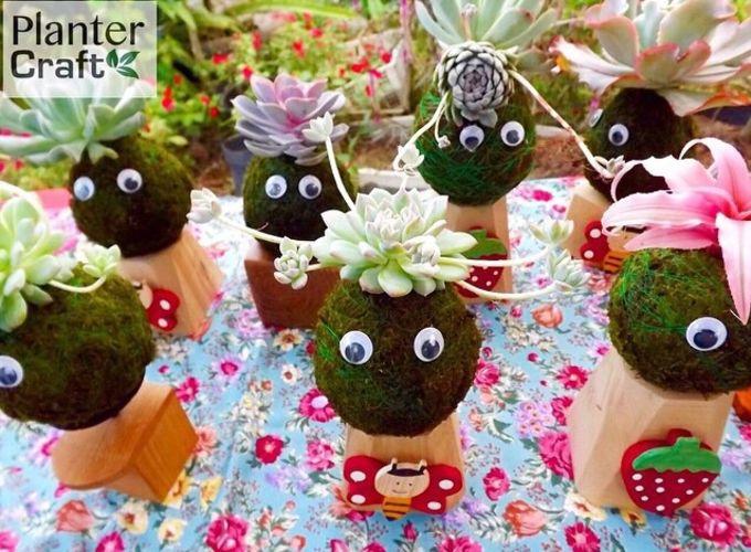 bisnis-planter-craft