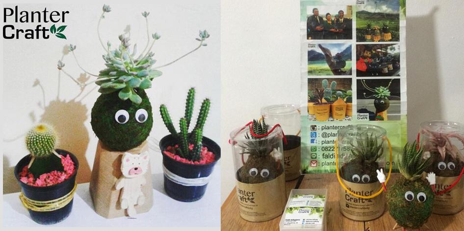 Photo of Planter Craft, Bisnis Boneka Lumut Yang Tawarkan Keuntungan Menggiurkan