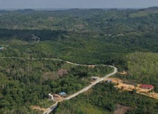Kalimantan, Ini Infrastruktur dan Kegiatan Otomotifnya